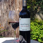 Mandrarossa Nero d'Avola – Fall in a Glass